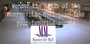 Monroeville Mall   Matt Blazi